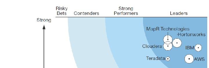 Forrester Wave - Hadoop Solutions 2014 - IMG